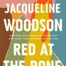 Image of Red at the Bone book cover