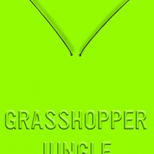 Grasshopper Jungle: A History