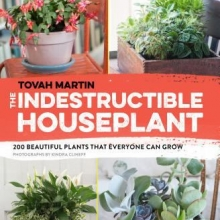 Indestructible Houseplant cover