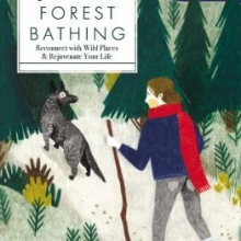 Cover image for The Joy of Forest Bathing by Melanie Choukas-Bradley
