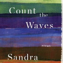 Count the Waves by Sandra Beasley