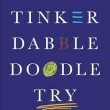 Tinker Dabble Doodle Try by Srini Pillay