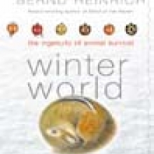 Cover image of Winter World by Bernd Heinrich