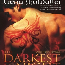 The Darkest Night cover