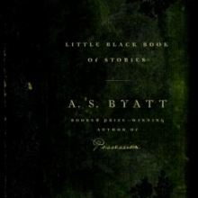 Little Black Book of Stories book cover