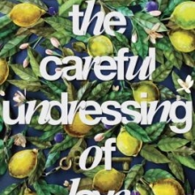 The Careful Undressing of Love by Corey Ann Hadyu