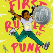 The First Rule of Punk book cover