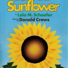 This is the Sunflower book cover
