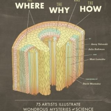 The Where, the Why, and the How: 75 Artists Illustrate Wondrous Mysteries of Science by Jenny Volvovski, Julia Rothman, and Matt Lamothe