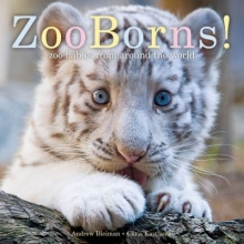 Zooborns cover image