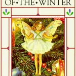 Flower Fairies of the Winter book cover
