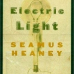 Electric Light cover