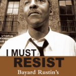 I Must Resist book cover