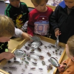children with insects