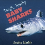 Tough, Toothy Baby Sharks by Sandra Markle