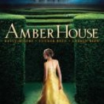 Cover image of Amber House