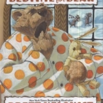 Cover image of the book Bedtime for Bear