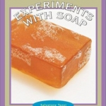 Experiments with Soap Book COver