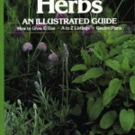 Herbs : An Illustrated Guide Book Cover