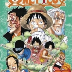 one piece book cover